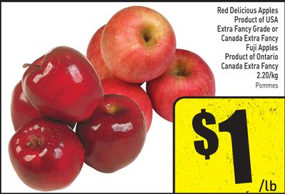 Red Delicious Apples Product of USA Extra Fancy Grade or Canada Extra Fancy Fuji Apples Product of Ontario Canada Extra Fancy 2.20/kg