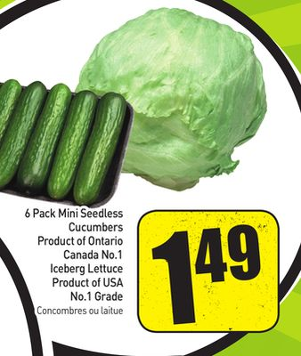 6 Pack Mini Seedless Cucumbers Product of Ontario Canada No.1 Iceberg Lettuce Product of USA No.1 Grade