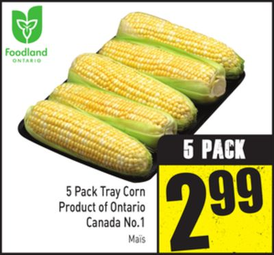 5 Pack Tray Corn