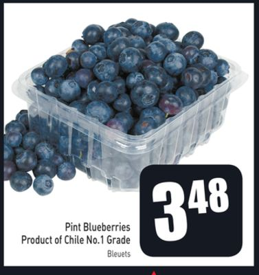 Pint Blueberries Product of Chile No.1 Grade