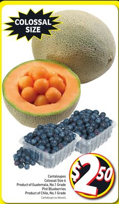 Cantaloupes Colossal Size 6 Product of Guatemala - No.1 Grade Pint Blueberries Product of Chile - No.1 Grade
