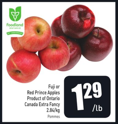 Fuji or Red Prince Apples Product of Ontario Canada Extra Fancy 2.84/kg