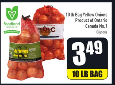 10 Lb Bag Yellow Onions Product of Ontario