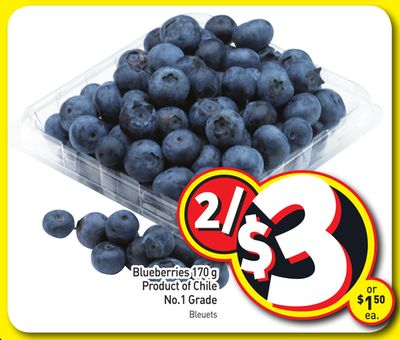 Blueberries 170 g Product of Chile No.1 Grade