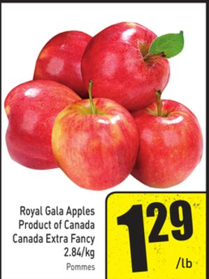 Royal Gala Apples 2.84/kg