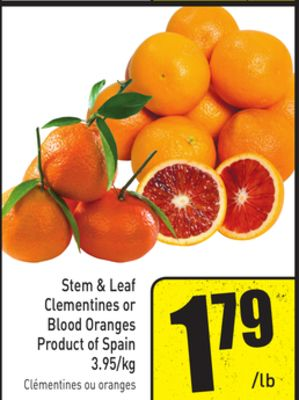 Stem & Leaf Clementines or Blood Oranges Product of Spain 3.95/kg