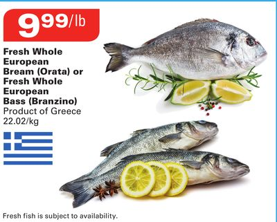 Fresh Whole European Bream (Orata) or Fresh Whole European Bass (Branzino)