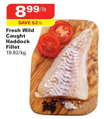Fresh Wild Caught Haddock Fillet