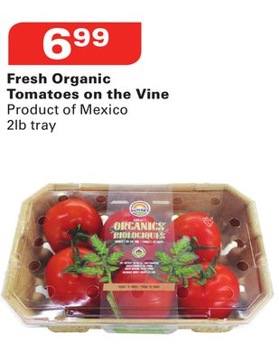 Fresh Organic Tomatoes On The Vine