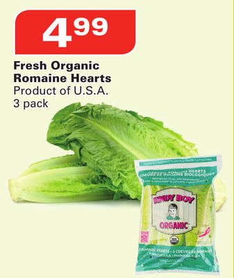 Fresh Organic Romaine Hearts