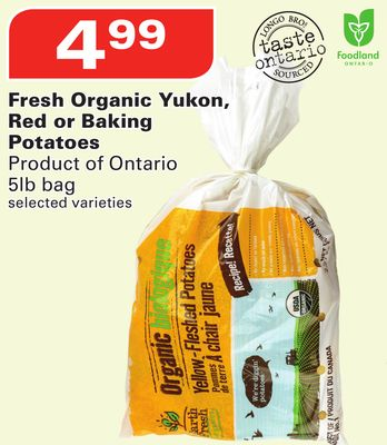 Fresh Organic Yukon - Red or Baking Potatoes