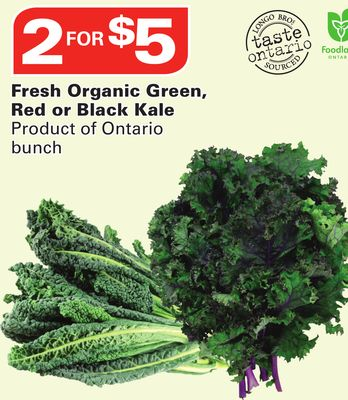 Fresh Organic Green - Red or Black Kale