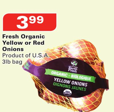 Fresh Organic Yellow or Red Onions