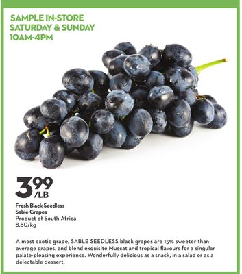 Fresh Black Seedless Sable Grapes