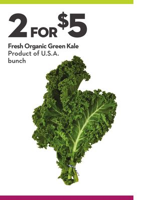 Fresh Organic Green Kale