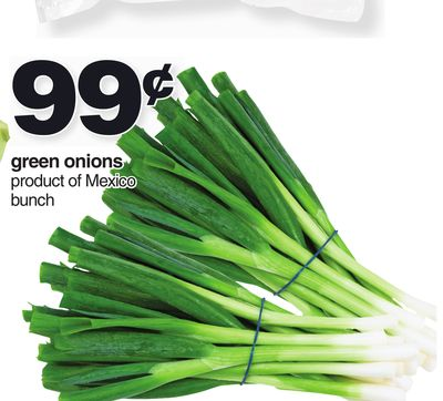 Green Onions - Bunch