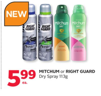 Mitchum or Right Guard Dry Spray
