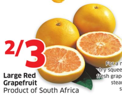 Large Red Grapefruit Product of South Africa