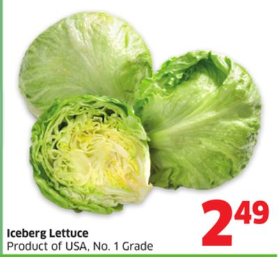 Iceberg Lettuce Product of USA - No. 1 Grade