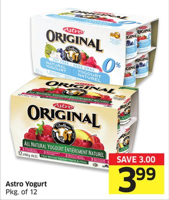 Astro Yogurt Pkg of 12