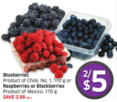 Blueberries Product of Chile - No. 1 - 170 g or Raspberries or Blackberries Product of Mexico - 170 g
