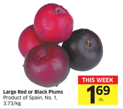 Large Red or Black Plums Product of Spain - No. 1 - 3.73/kg