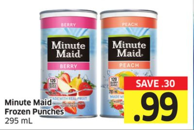 Minute Maid Frozen Punches 295 mL