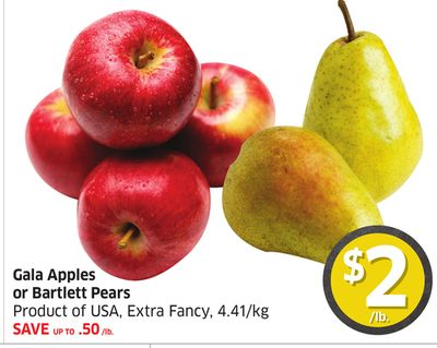 Gala Apples or Bartlett Pears Product of USA - Extra Fancy - 4.41/kg