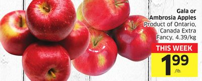 Gala or Ambrosia Apples Product of Ontario - Canada Extra Fancy - 4.39/kg