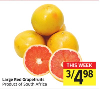 Large Red Grapefruits Product of South Africa