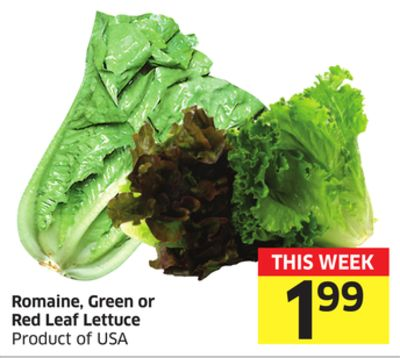 Romaine - Green or Red Leaf Lettuce Product of USA