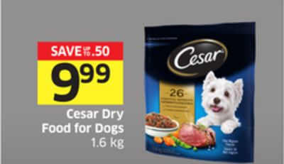 Cesar Dry Food For Dogs 1.6 Kg