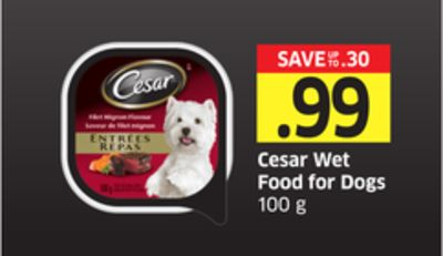 Cesar Wet Food For Dogs 100 g
