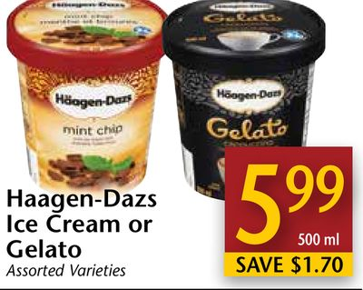 Haagen dazs ice cream or gelato on sale for Gelati haagen dazs