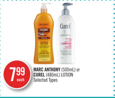 Marc Anthony(500ml) or Curel (480ml) Lotion