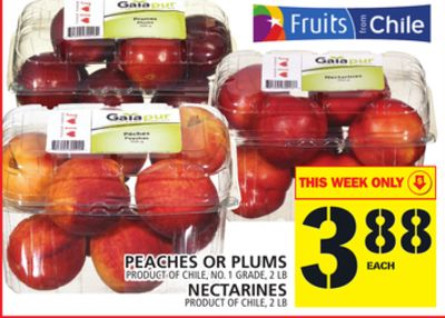 Peaches Or Plums