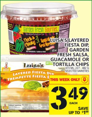 Luisa's Layered Fiesta Dip - Garden Fresh Salsa - Guacamole Or Tortilla Chips