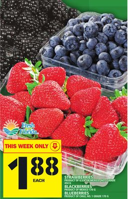 Strawberries Or Blackberries Or Blueberries
