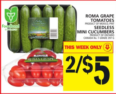 Roma Grape Tomatoes Or Seedless Mini Cucumbers