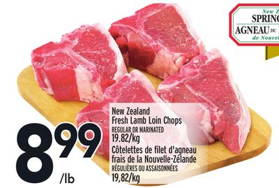 New Zealand Fresh Lamb Loin Chops
