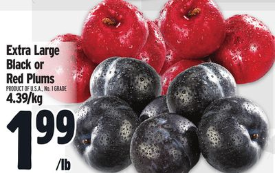 Extra Large Black or Red Plums