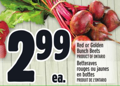 Red or Golden Bunch Beets