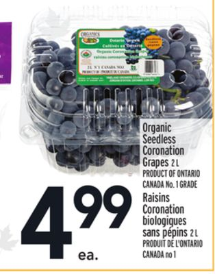 Organic Seedless Coronation Grapes