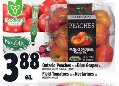 Ontario Peaches 3 L Or Blue Grapes 2 L Product Of Ontario - Canada No. 1 Grade Or Field Tomatoes 3 L Or Nectarines 2 L Product Of Ontario