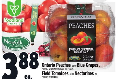 Ontario Peaches 3 L Or Blue Grapes 2 L Field Tomatoes 3 L Or Nectarines 2 L