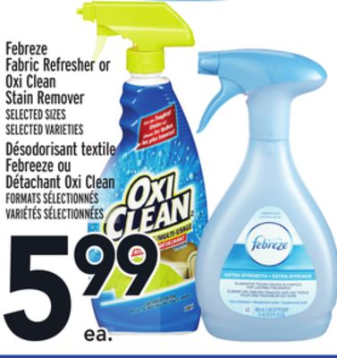 Febreze Fabric Refresher or Oxi Clean Stain Remover