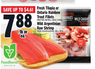 Fresh Tilapia or Ontario Rainbow Trout Fillets Family Pack - Min 900 g - 7.88/lb - 1.74/100 g Wild Argentinian Raw Shrimp Frozen - 20/30 Or 26/30 Size - 300 g - 7.88 Ea