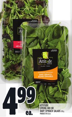 Attitude Spring Mix Or Baby Spinach Salads