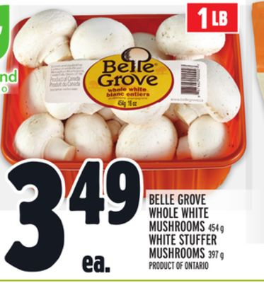 Belle Grove Whole White Mushrooms 454 g White Stuffer Mushrooms