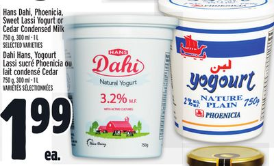 Hans Dahi - Phoenicia - Sweet Lassi Yogurt or Cedar Condensed Milk